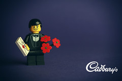 All because the Lady loves Milk Tray... (Debbie Hickey) Tags: cute love studio toys lego teddy sweet valentines iloveyou tipperary lightbox feb14 fakeplastictrees lightsetup valday valentinescard feb14th legoflowers legomoc studioten debbiehickey debbiehickeyphotography rosesareredhappyvalentinesday