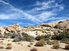 fpx021713-02 (fontplaydotcom) Tags: ca rocks desert joshuatree