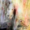 Cat Focus (gailpiland) Tags: abstract bird texture cat photoshop cardinal prey hunt thegalaxy flickraward theunforgettablepictures theperfectphotographer thebestofday gailpiland ringexcellence flickrstruereflection1 rememberthatmomentlevel1 rememberthatmomentl1