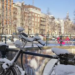 Intense sunshine melts snow in the centre of Amsterdam (Bn) Tags: world street cruise pink trees windows winter light sunset people house snow cold holland heritage church water netherlands dutch amsterdam weather bike corner walking frank anne boat canal cozy cool topf50 colorful jan snowy walk seagull bikes atmosphere scooter file canals unesco covered snowfall sled mokum rondvaart rembrandt gezellig cafs keizersgracht jordaan sleding slee westertoren pakhuis lange westerkerk wester celcius grachtengordel rondvaartboot 1000km 50faves