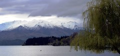 Storm clouds over Lake Wanaka, New Zealand (scinta1) Tags: lakewanaka otago southisland newzealand lake water clouds willow tree mountains snow dark blue calm serene tranquil white green