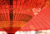 NODATE tea ceremony (tomosang R32m) Tags: japan umbrella shrine tea ceremony 桜 cherryblossom sakura fukuoka 神社 nodate 福岡 春 さくら fukuma お茶会 miyaji 番傘 寒緋桜 宮司 tsuyazaki miyajidake bangasa fukutsu 津屋崎 野点 福間 宮地嶽神社 cerasuscerasoides 福津