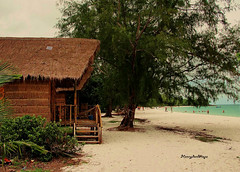 Koh Rong Samloem (Henry der Mops) Tags: ocean travel sun beach water strand trekking relax sand reisen asien cambodia kambodscha meer südostasien wasser sommer treehouse sonne golfvonthailand kohrongsamloem sonydsch20 henrydermops