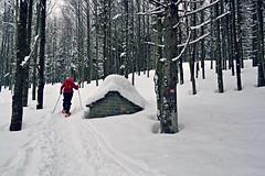 ciaspolando (Giulia van Pelt) Tags: sport italia neve sentiero inverno pietra montagna bianco bosco appenninotoscoemiliano casupola ciaspole invernale innevato