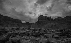 Banks of the Colorado, Moab UT (tr0mbley) Tags: moab utah ut colorado river arches national park canyonlands camping hiking nikon d810 black white bw monochrome desert cliffs rocks butte moutains