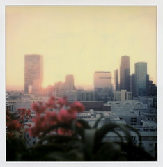 Upstairs Sunset 2 (tobysx70) Tags: the impossible project tip polaroid sx70sonar sonar instant color film for sx70 type cameras impossaroid upstairs sunset ace hotel broadway dtla downtown la california ca bar cityscape skyline skyscraper highrise sun bougainvillea dtlapolawalj2 polawalk 071616 toby hancock photography