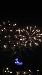 Magic Kingdom Fireworks (MaryPhotos) Tags: fireworks disney cinderela castle castelo fogosdeartifcio wishesnighttimespectacular magickingdom