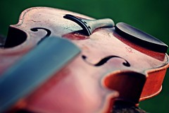 IMG_9883c - 11.09.2015 (hippo1107) Tags: violine geige musik instrument stillleben zahnderzeit antik alt canoneos650d canon eos 650d september 2015