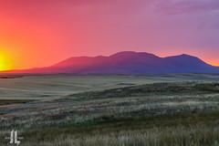 IMG_8665 (larzz4444) Tags: chester montana winterwheat chestermontana gleaner drylandfarming sweatgrasshills joplinmontana wheatharvest sunset