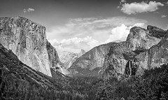 National Parks Centenial (Dan Gifford) Tags: california yosemitenationalpark nationalpark nps monochrome bw halfdome elcapitan bridalveilfalls waterfall tunnelview yosemitevalley