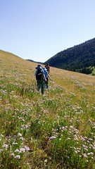 heading back up (RubyT (I come here for cameraderie!)) Tags: steamboatrock wyoming greybullhwy mountains bighorns lg3 steamboatvalley wildflowers hiking lgg3