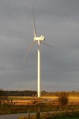In morning light (Steenjep) Tags: vestas vindmlle windturbine nikon s6400 rjen sunds nature vind wind sun sol morgen morning