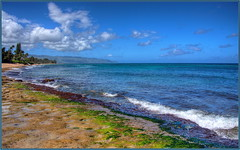 Turtle Beach (tdlucas5000) Tags: hawaii oahu turtle beach turtlebeach hdr ocean sea clouds seascape landscape photomatix