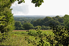 North Hampshire country walk (christina.marsh25) Tags: hampshire countryside bridlepath footpath rollinghills