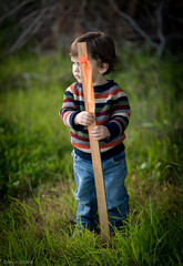 It's Mine.. (Sonja Stone) Tags: winter grass outside sweater sticks toddler finding discovery greenboy