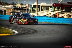 APR-Motorsport-Rolex-24-2013-058