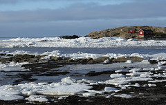 A lot of ice! (Lena-H) Tags: winter sea ice