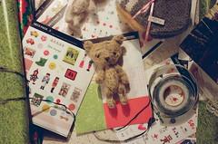 Lumi / Mr. Bear (Elza Smyth) Tags: film analog 50mm teddy handmade nikonfm2 christmasgifts kodakportra400 sooc