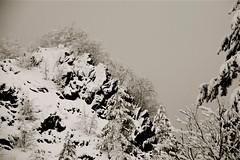 """""""sul cucuzzolo della montagna"""" ("""" paolo ammannati """") Tags: panorama mountain snow me rock fog alberi forest raw nuvole photographer top natura io cielo tuscany neve toscana terra nebbia rocce inverno viaggi montagna verna biancoenero bosco casentino ghiaccio foresta laverna chiusidellaverna galaverna paoloammannati effettinaturali fotoconneve panoramaconneve"""