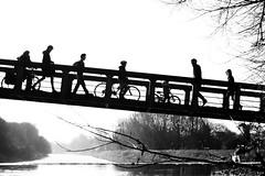 Pont y Gored-ddu, Afon Taf, Caerdydd (Rhisiart Hincks) Tags: drochaid droghad pont zubi pod šaldi bridge ponte piriti puente brücke мост 桥 duagwyn zwartwit gwennhadu blackwhite zuribeltz blancetnoir monochrome unlliw shwarzweiss cymru kembre wales achuimrigh caerdydd kerdiz pontcanna cardiff silwét silhouette taf taff afon ibai river stêr abhainn dubhagusgeal dubhagusbán czarnobiałe blancinegre blancoynegro blackandwhite اسودوابيض، bw zwartenwit mustajavalkoinen crnoibelo černáabílá schwarzundweis feketefehér melnsunbalts juodairbalta negrușialb siyahvebeyaz črnoinbelo черноеибелое чорнийібілий 黒と白 黑与白, ledskeud zilueta silueto silhueta siluetă sziluett cysgodlun