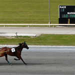 Cambridge Raceway P1210623 thumbnail