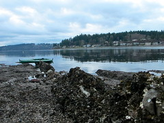 Port Orchard, WA (carpepiscem) Tags: pugetsound washingtonstate portorchard kitsappeninsula