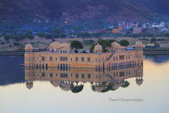 Jal Mahal (Tarun Chopra) Tags: morning india sunrise gurgaon jaipur rajasthan jalmahal canon7d