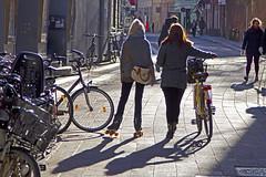 Friends on wheels (Ivan Naurholm. thanks, for more than 500.000 views) Tags: girls friends light sun bike copenhagen denmark spring rollerskates flare biker danmark skates københavn cykel skøjter hjul forår rulleskøjter piger cyklist påhjul
