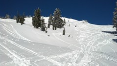 2013-03-07_09-29-25_700 (MtHoodMeadows) Tags: snow bluebird mthoodmeadows newsnow powdergallery