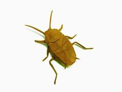 Cockroach (Al3bbasi.) Tags: art paper insect origami cockroach al3bbasi flickrandroidapp:filter=none