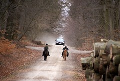 Traffic on forest trail (osto) Tags: denmark europa europe sony zealand dslr scandinavia danmark a300 sjlland  osto alpha300 osto march2013