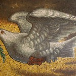 Dove of Peace thumbnail