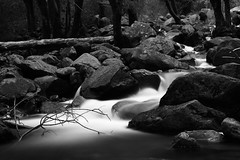 Creek (Lue Huang) Tags: longexposure blackandwhite bw water creek canon yosemite yosemitenationalpark 24105 60d