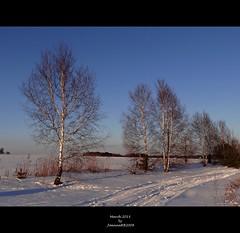 March 2013 (JoannaRB2009) Tags: road blue trees winter white snow landscape countryside view flat path space nowhere poland polska fields lodz łódź dobieszków