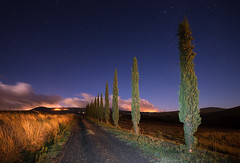 Starry Sky Over a Cypress Road (Philipp Klinger Photography) Tags: road longexposure italien blue trees sky italy cloud mountain tree nature field grass clouds stars landscape star nikon europe long exposure italia angle path wide wideangle dirt val tuscany cypress monte toscana valdorcia philipp starry gravel d800 toskana amiata castiglione dorcia klinger zypresse monteamiata orcia castiglionedorcia cipresse dcdead nikond800