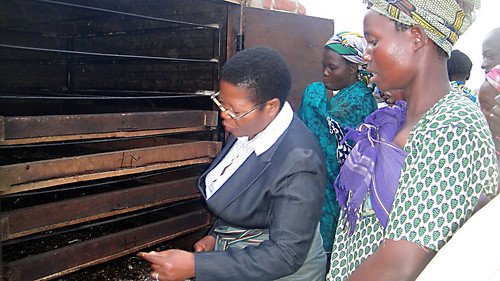 Women fish processors in Kachulu, Malawi. Photo by Precious Mwanza, 2012.
