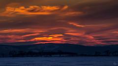Sunset im Harz