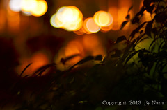 Happy bokeh Wednesday ( Nana) Tags: life light colorful bokeh taiwan  simple taiwan  happybokehwednesday happy wednesday