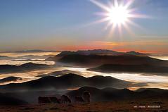Gorbeia egunsentian (EXPLORE) (Jabi Artaraz) Tags: jabiartaraz jartaraz zb euskoflickr amanecer gorbea mendia montaña bruma euskadi wow