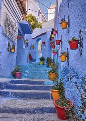 Chefchaouen, Morocco (ott.geoffrey) Tags: chefchaouen morocco street flowerpots colors colorful stairs stairway