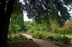 1291-10L (Lozarithm) Tags: hidcote nt flora paths blipmeet pentaxzoom k50 1224 smcpda1224mmf40edalif