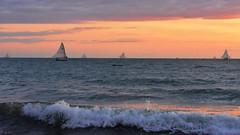 Vela que leva o barco (Andr Felipe Carvalho) Tags: vento peroba icapu cear jangada pesca pescador nikon d7200 18300 alvorada sol nascente goldenhour