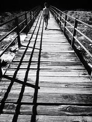 Upon, between, towards (Lumase) Tags: monochrome irene walk walking bridge wooden footpath sunlit vertical portrait valgrande