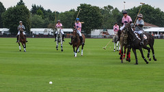 Guards Polo Club Aug 2016 12 (Timelapsed) Tags: sport ourdoors horseback hourse windsor windsorgreatpark
