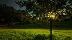 Melancholy (Telmo Pina e Moura) Tags: almada parquedapaz tokina1116 sunset hdr