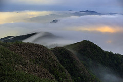 Mt.Wufen, Taiwan _IMG_8287 (Len) Tags:   seaofclouds mist fog    mtwufen wufenshan    newtaipeicity taiwan   landscape    blackcard 6d 518 2016    advectionfog frontalfog ef50mmf18ii