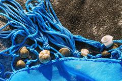 Memory of sea (petrapetruta) Tags: turquoise shells closeup sunny sonya7 colorful