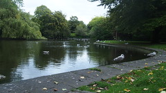 P1010837 (J. Prat) Tags: stephen green park