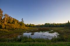 Northwoods (hmcoby) Tags: minnesota north itasca parkrapids september 2015