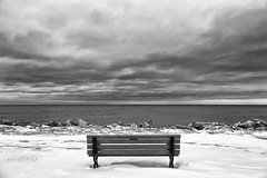 Cold Comfort, Monochrome Project, Week #1 (dibytes) Tags: winter bw snow water collingwood waterfront january monochromatic millenniumpark nottawasagabay momsbench